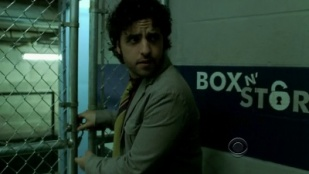 Numb3rs 05x21 : Disturbed- Seriesaddict